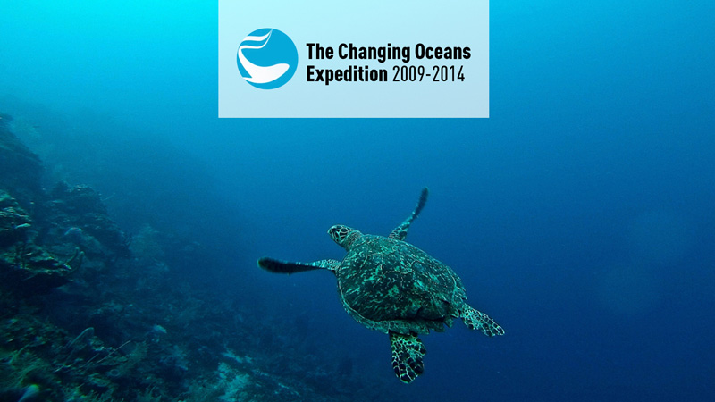 IMG-EXP-FP-The changing Oceans expedition